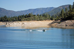 Photo of water skier at Shasta Lake